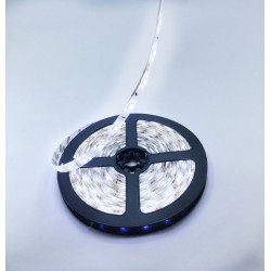 FITA DE LED BRANCO FRIO 5MTS - MOD. 35X28 S/FONTE